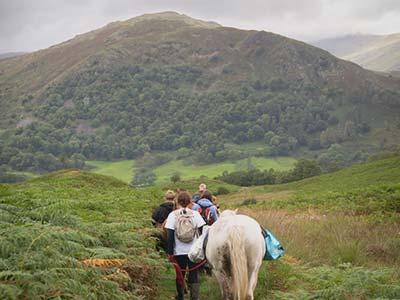Packhorse Picnic, Adventure and Wellness Day